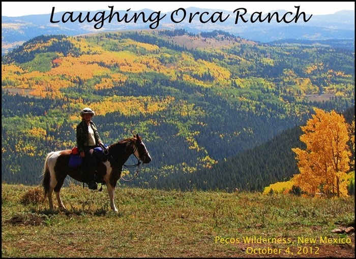 Trail Ride of a Lifetime ~ Pecos Wilderness (Part 1)