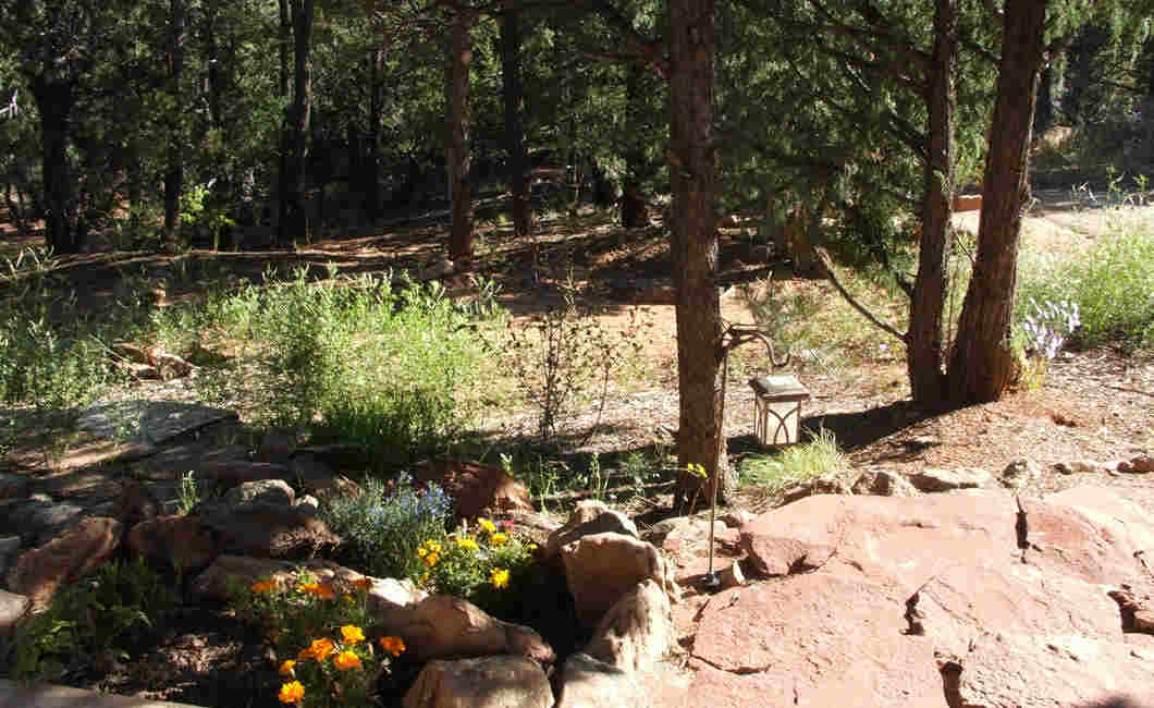 DragonflyCanyonRetreat-04