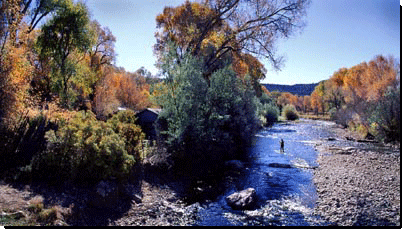 Pecos River Cabins Retreat